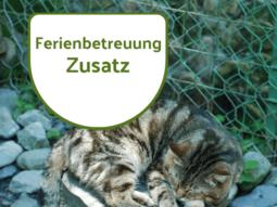 Ferienbetreuung Katzen & Co. Zusatz Shop