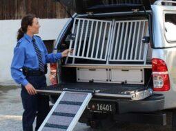 Sicherer Hundewalk Transport